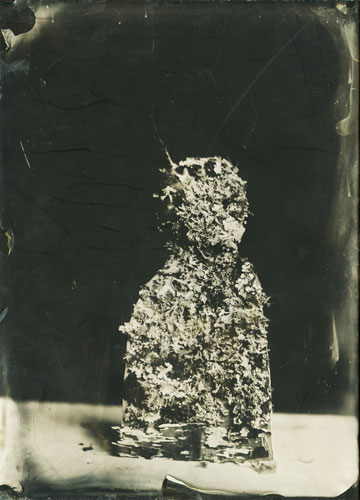 Lichen-©-Bertrand-Secret-Ambrotype