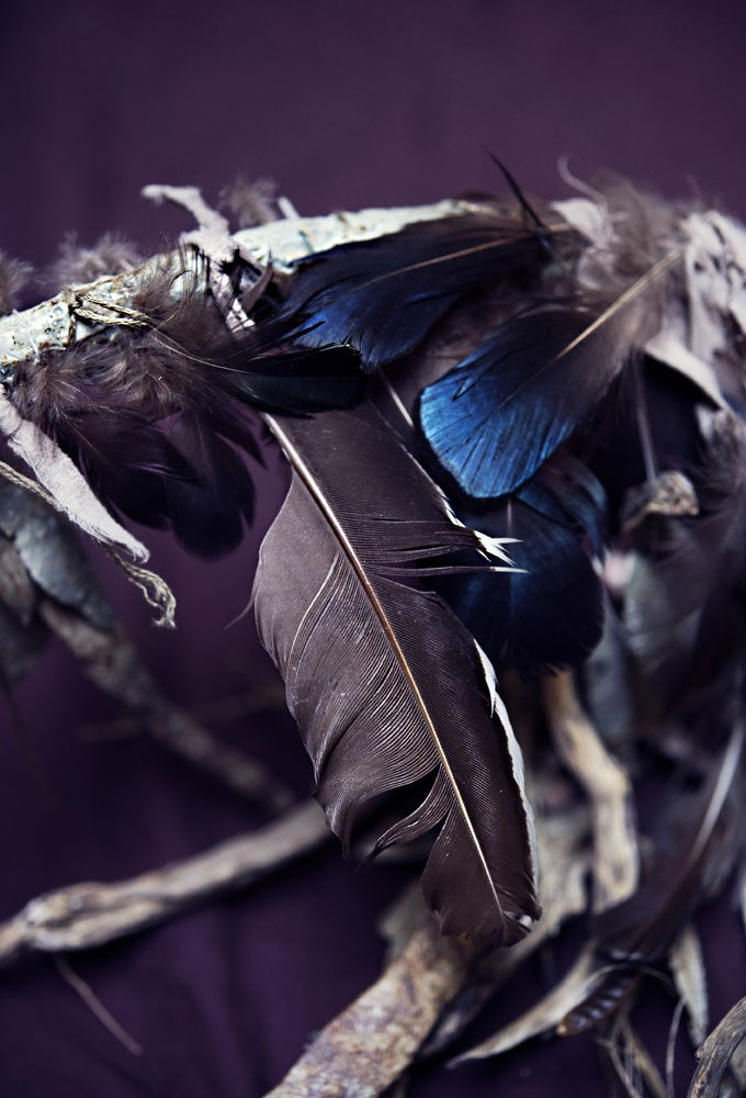 Oiseau-de-nuit-(plume)-Bertrand-Secret-©-Nathalie-Malric.jpg